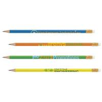 BIC &#174 Pencil Solids