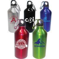 16oz. Stainless Steel Bottle