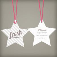 Holiday Star Seed Paper Ornament Double Sided